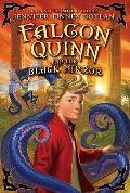 Falcon Quinn and the Black Mirror