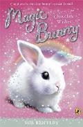 Magic Bunny: Chocolate Wishes