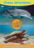 Ocean Adventures, Volume 1: Whales, Waves, and Ocean Wonders