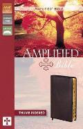 Bible Amplified Burgundy Thumb Indexed
