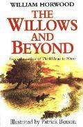 Willows & Beyond