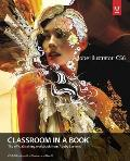 Adobe Illustrator CS6 Classroom in a Book: The Official Training Workbook from Adobe Systems [With CDROM]