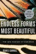 Endless Forms Most Beautiful The New Science of Evo Devo & the Making of the Animal Kingdom