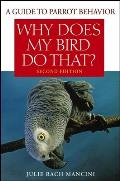Why Does My Bird Do That A Guide to Parrot Behavior