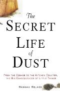 Secret Life of Dust From the Cosmos to the Kitchen Counter the Big Consequences of Little Things