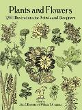 Plants & Flowers 1761 Illustrations for Artists & Designers