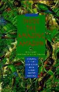 Inside The Amazing Amazon