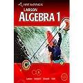 McDougal Littell Algebra 1: Personal Student Tutor CD-ROM with Site License