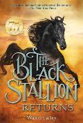 Black Stallion 02 Black Stallion Returns