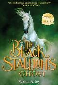Black Stallion 18 Black Stallions Ghost