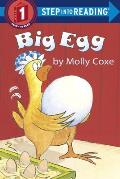 Library Book: Big Egg