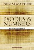 Exodus and Numbers: The Exodus from Egypt