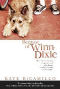 Because Of Winn Dixie Movie Cover