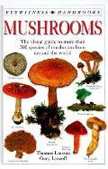 Mushrooms Eyewitness Handbooks