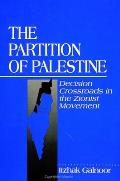 Partition of Palestine: Decision Crossroads in the Zionist Movement