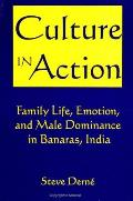 Culture in Action: Family Life, Emotion, and Male Dominance in Banaras, India