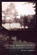 Gothic Reflections Narrative Force in Nineteenth Century Fiction
