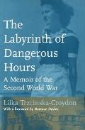 The Labyrinth of Dangerous Hours: A Memoir of the Second World War
