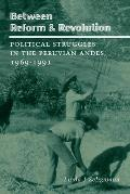 Between Reform and Revolution: Political Struggles in the Peruvian Andes, 1969-1991