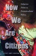 Now We Are Citizens: Indigenous Politics in Postmulticultural Bolivia