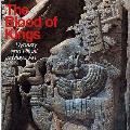 Blood of Kings Dynasty & Ritual in Maya Art