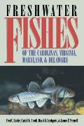 Freshwater Fishes of the Carolinas Virginia Maryland & Delaware