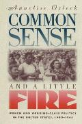 Common Sense & a Little Fire Women & Working Class Politics in the United States 1900 1965
