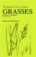 Grasses: Bromus to Paspalum