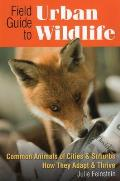 Field Guide to Urban Wildlife