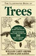 Illustrated Book Of Trees Eastern