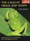 Calls Of Frogs & Toads