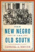 The New Negro in the Old South