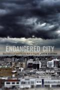 Endangered City: The Politics of Security and Risk in Bogot?