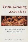 Transforming Sexuality The Archetypal World of Anima & Animus