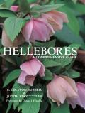Hellebores A Comprehensive Guide