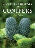 Natural History Of Conifers