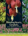 Bleeding Hearts Corydalis & Their Relatives