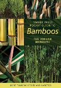 Timber Press Pocket Guide to Bamboos More Than 300 Species & Varieties