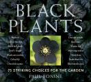 Black Plants 75 Striking Choices for the Garden