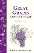 Great Grapes Grow The Best Ever