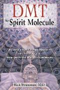 DMT The Spirit Molecule A Doctors Revolutionary Research into the Biology of Near Death & Mystical Experiences