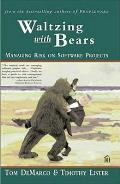 Waltzing With Bears Managing Risk On Sof