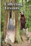 Collecting Lessons: A Fable