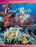 The Secrets of Coral Reefs: Crowded Kingdom of the Bizarre and the Beautiful