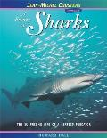 A Frenzy of Sharks: The Surprising Life of a Perfect Predator