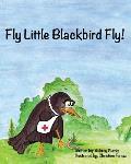 Fly Little Blackbird Fly