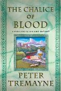 Chalice of Blood A Mystery of Ancient Ireland
