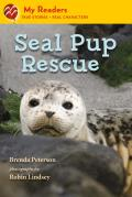 Seal Pup Rescue