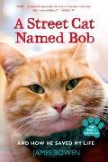 Street Cat Named Bob & How He Saved My Life