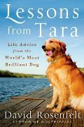 Lessons from Tara: Life Advice from